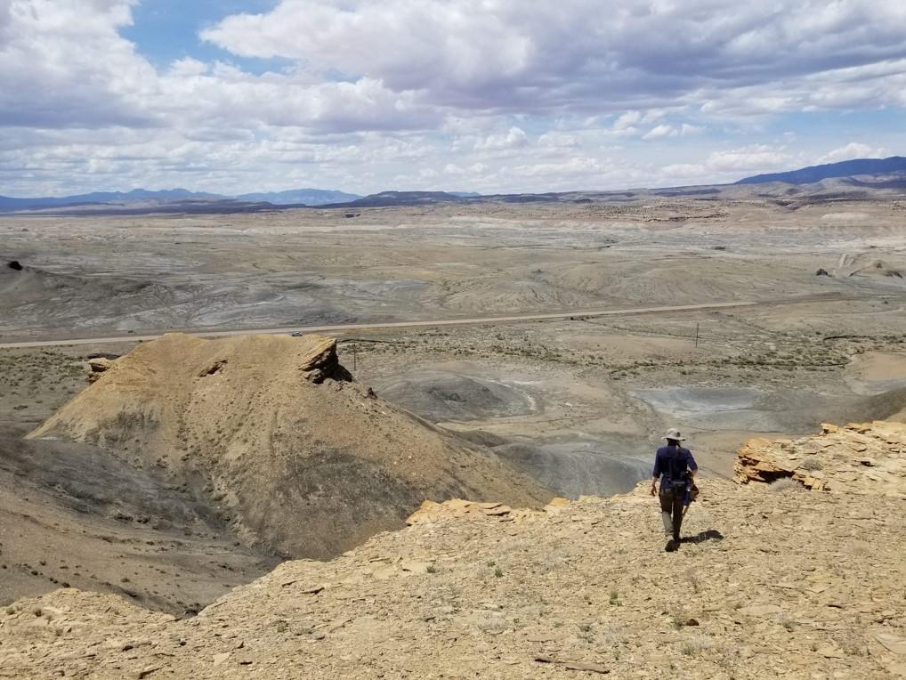 Gallup Sandstone-2
